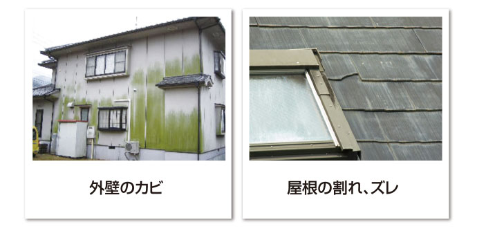 外壁のカビ、屋根の割れ・ズレ